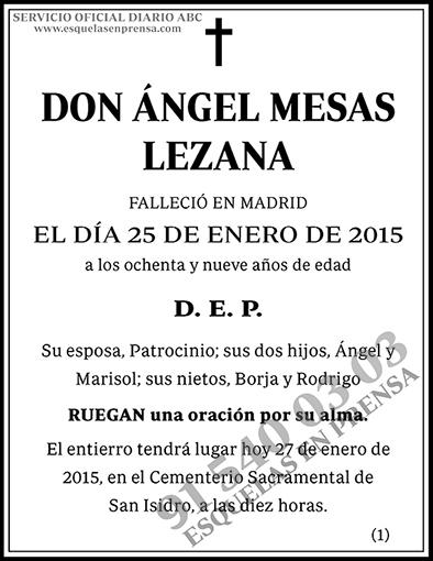 Ángel Mesas Lezana